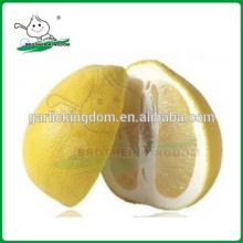 Свежее помело из фарфора / медового помоло / Китай Грейпфрут Помело