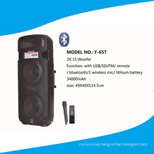 Double 15 ′′ Professional Speaker with Mico, Remote, Bt F65t