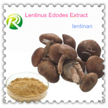 High Quality 100% Natural Lentinus Edodes Extract Lentinan