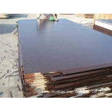 18mm Black Film Poplar Core Marine Sperrholz zum Dubai Markt