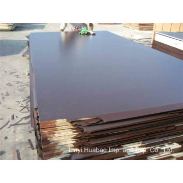 18mm Black Film Poplar Core Marine Plywood to Dubai Market