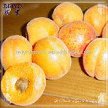 Fruit apricots