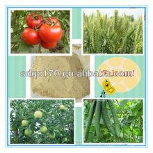 Verkaufen Fungizid Mancozeb 85% TC 70% WP 80% WP