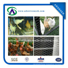 2015 Hot Sale! ! Galvanized Hexagonal Chicken Wire Mesh