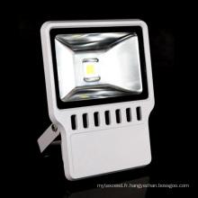 LEDs 100W