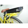 TOP populärstes elektrisches Fahrrad für Verkauf elektrisches Strandkreuzerfahrrad hergestellt in China