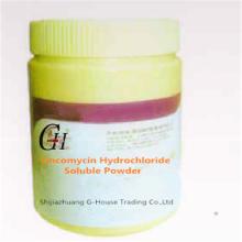 Lincomycinhydrochlorid lösliches Pulver