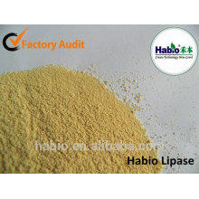 Lipase / Lipozyme enzyme enzymatique additif