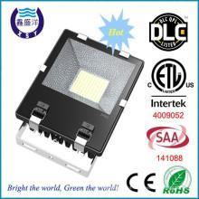ETL Certified chip SMD Mean Well Driver 8500lm 100w levou iluminação de inundação