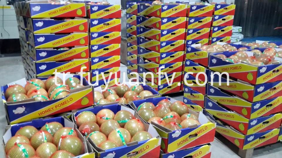 open box honey pomelo