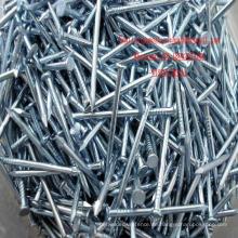 Builing Materialien Eisen Nägel verzinktem Stahl Nägel in China-Fabrik