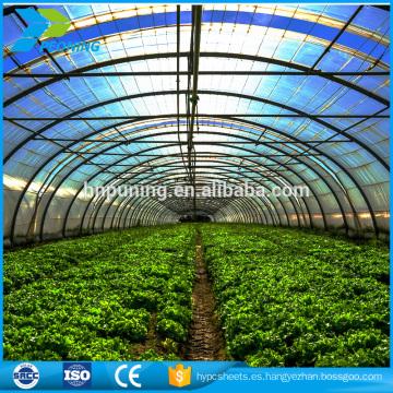 Invernadero de policarbonato para plantas Verduras de flores