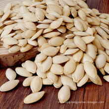 Hot sale dried pumpkin seeds market price