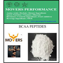Sports Nutrition Bcaa Peptides