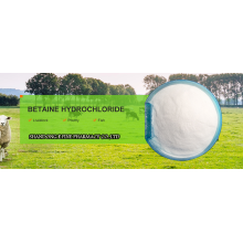 Les additifs nutritifs 98% betaine hcl feed grade