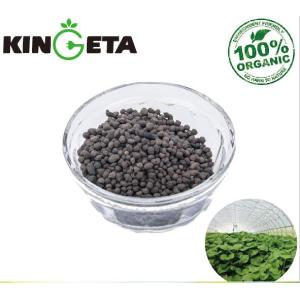 High Quality Bacillus Organic Lettuce Fertilizer