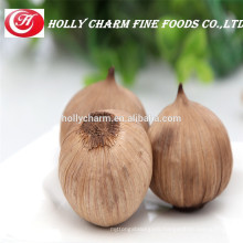 Fermented solo black garlic keeping you thealthy
