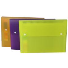 Archivo con el botón-13 bolsillos Color Normal de extensión