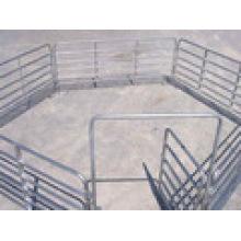 , Верховая панелей/панелей овец за забором
