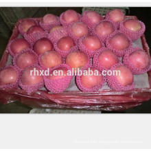 2017 crop fresh fruits red fuji apples