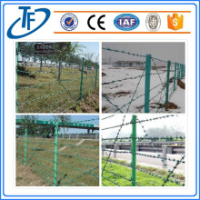 Sale High Quality Stainless Barbed Wire