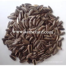 Sunflower Seeds sunflower kernel