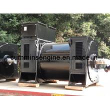 Génératrices à haute tension Sychronous AC (6303-6 1600kw)