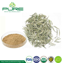 Organic White Tea Extract Powder Tea/ Tea polyphenols