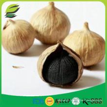 China fermented black garlic seeds