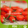 Ningxia high quality Chinese organic dried goji berries/wolfberry/medlar