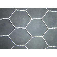 Hexagonal Wire Mesh-Galvanized or PVC-Coated