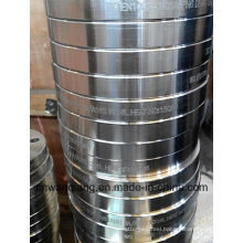 Stainless Steel Lab Joint Flange