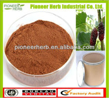 NATURAL MULBERRY LEAF EXTRACT POWDER