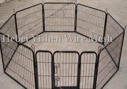 dog cage003_