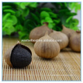 Fermented Odourless Black Garlic Bulb Cloves for Healthcare