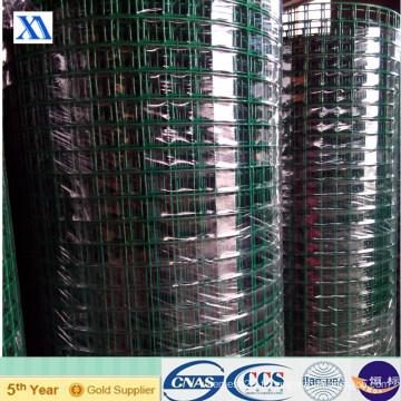Maille métallique soudée revêtue de PVC et Galvanzied (XA-417)
