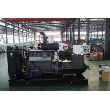 Meilleur prix générateur diesel 180kW Steyr
