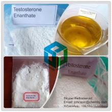 Testosterona en polvo esteroide anabólica Enanthate 315-37-7 para el músculo que gana