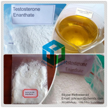 Testostérone anabolique Enanthate 315-37-7 de poudre de stéroïde pour le gain de muscle