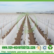 Tela no tejida de la cubierta de la agricultura con los 6.4m de ancho