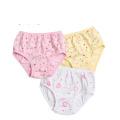 Nouvelle culotte de coton de conception mignonne, jupes imprimées mignonnes, jupes courtes pour filles, bavette Sexi Girl Boxer