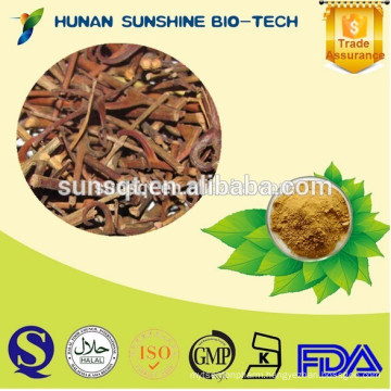100% Natural Gambir Plant Extract 5% Alkaloids