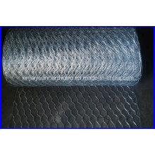 Hot Sale 30m / Roll Galvanized Hexagonal Wire Netting