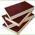 Film Faced Plywood y Marine Plywood