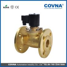Steam brass flange type solenoid check valve