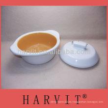 Tazón de fuente de cerámica de la reserva con la cubierta