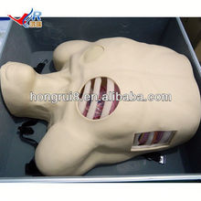 ISO Pleural Drainage Manikin, Pneumothorax Decompression, thoracentesis drainage manikin