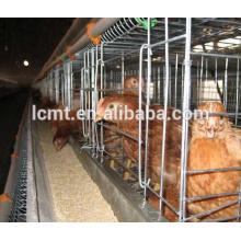 Sistema completo de jaulas de engorde para aves de corral
