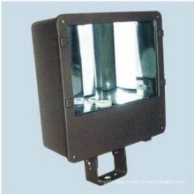 Floodlight Fixture (DS-329A)