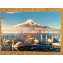Sublimation Printable Aluminium Blank Sheets
